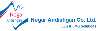 Negar Andishgan Co. Ltd.