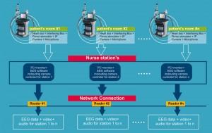 network_video_eeg